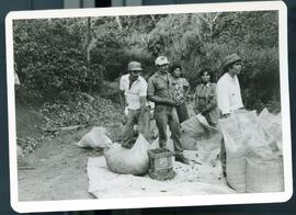 Images of Nicaraguan coffee workers bagging coffee for later processing.