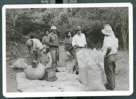 Images of Nicaraguan coffee workers bagging coffee for later processing